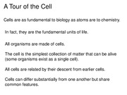 Topic 2 Cell Biology(3)
