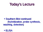 MCB301 Fall 2014 Lecture Handout 9 Nov 14 Southern blot part 2 and ELISA