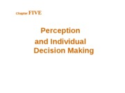 Ch.5-Perception and Individual Decision Making