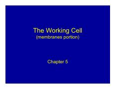 Chapter 5 ( cell membrane)