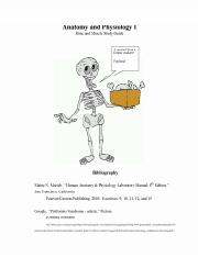 Axial Skeleton Study Guide.pdf
