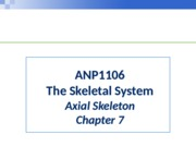ANP1106 - Skeletal System Chapter 7 - Axial