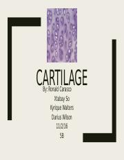 Cartilage and Nervous Tissue
