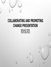 Collaborating and Promoting Change Presentation Final