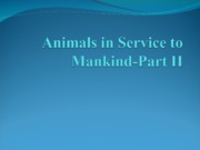 Animals in Service to Mankind-Part II
