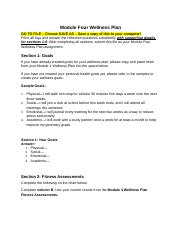 module_four_wellness_plan.doc