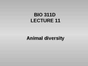 Lecture 11 animal diversity posted