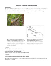 lizard lab report bio Ecology and evolution of social complexity in lizards evolutionary biology  when we think of social animals our thoughts may go to ants,.
