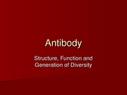 Antibody structure function and generation of diversity