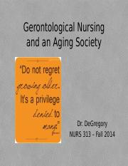 PPP chapter 1 Gerontological Nursing and an Aging Society 2013