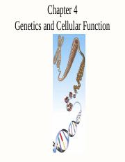 chapter-4-genetics-and-cellular-function1