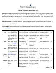 IT 335 Milestone Two Guidelines and Rubric