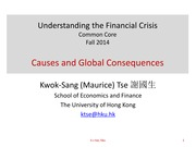 L3 Causes and Global Consequences of the Crisis s2014