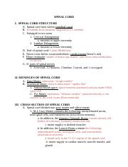 A215.nervous.system.spinal.cord.outline (1).docx
