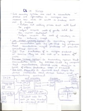 Ch 19 notes