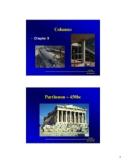 BRAE433 Lecture Ch 9 Columns ss
