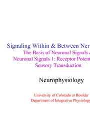2 neuronal signals 1 - receptor potentials and sensory transduction - lecture slides
