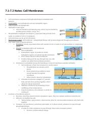 7.1-7.3 Notes (Membranes).docx