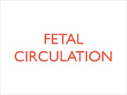 Fetal Circulation_PDF copy