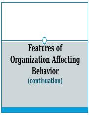 Features of Organization Affecting Behavior.pptx