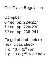 LEcture 23 cell cycle
