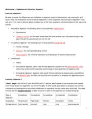 reaction paper on stem cell research Stem cell research paper writing tips for stem cell research papers list of stem cell research papers topics.