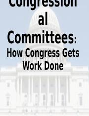 Congressional Committees 1 Powerpoint