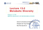 17-2 Lecture 13-2 Metabolic diversity