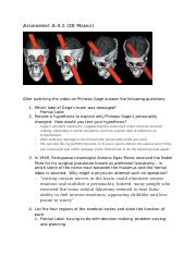 A-3.1 Assignment Phineas Gage (3)