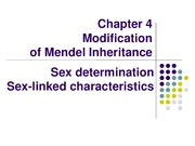 GENETICS Chapter 4 modification of mendel