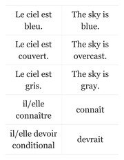 French conditional, weather, imparfait Flashcards