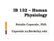 IB 132 - Lectures  -  Disorders of the Endocrine System