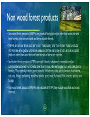 Forest Produce.pdf