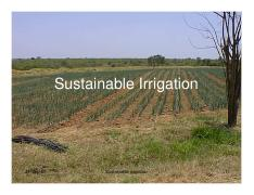 Sustainable Irrigation.pdf