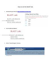 how_to_do_the_blast_lab