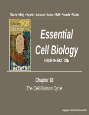 Cell Mol Biology Chapter 18 Summer 2017