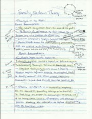 cafs 223 family system theory notes