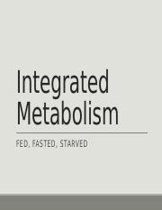 Integrated Metabolism