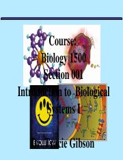 Macromolecules Nts 2016 for Bb (2).ppt
