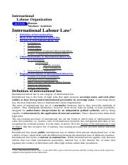 International labour law. A brief introduction.doc