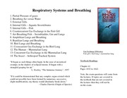 Lecture 6 A02 Respiratory Systems 2014 WEB