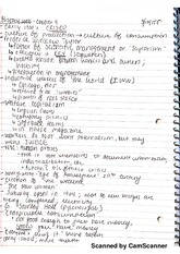 HIS 1000 Class Notes (1)