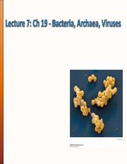 Lecture 7 - Ch20_Bacteria_Moody.pdf