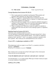 MG-section_week_8-answers