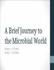 Chapter 2 - A Brief Journey to the Microbial World
