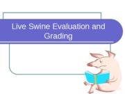 Swine_Grading_and_Evaluation_2009_RLL