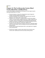 blood flow notes