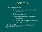 Lecture3 (1)