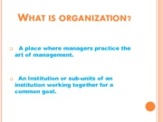 What is organization (Presentation)