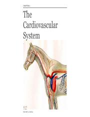 Chapter 6 Cardiovascular System.pdf